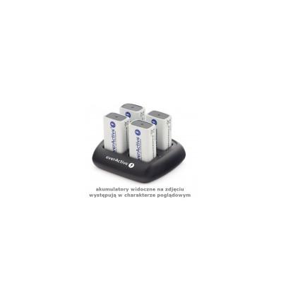 Профессиональное зарядное устройство EverActive NC-109