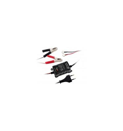 Процессорное зарядное устройство 6V/12V EverActive CBC-1