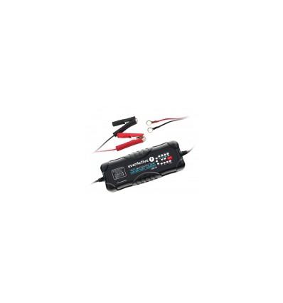 Процессорное зарядное устройство 12V/24V EverActive CBC-10